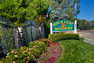 Gold Leaf Nursery - Redding