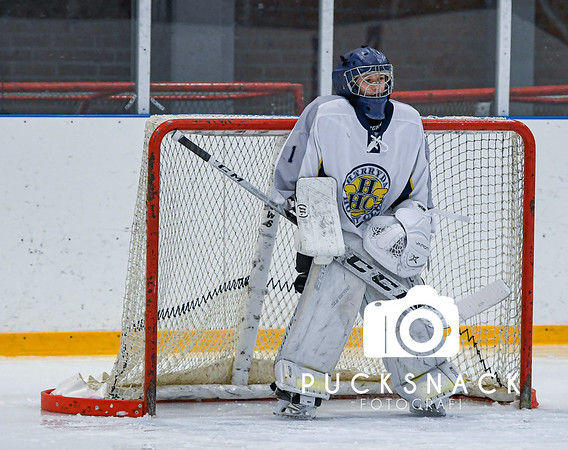 Göteborg Ishockeycup 2020: Almtuna IS - Härryda HC 2020-01-04