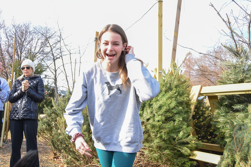 20191207 Getting Christmas Tree 024.jpg