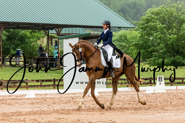 Texas Rose Horse Park Dressage Show