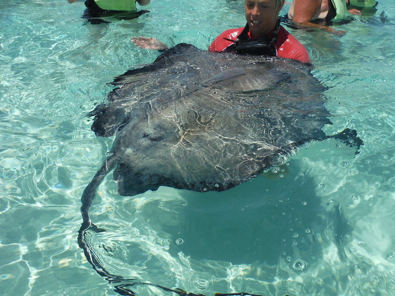 Cruise 03-14-2016 Grand Cayman 7.JPG