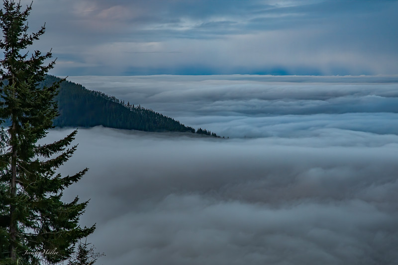 Hurricane Ridge Mountain in Clouds.jpg