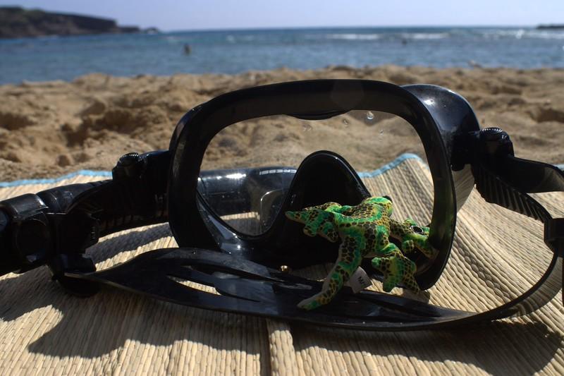 Hawaii_0585 (Large).jpg