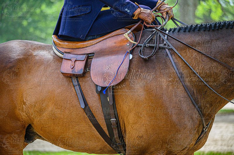 Ladies Side Saddle Hunter Hack