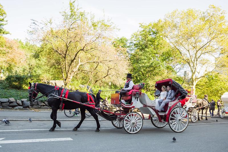 Central Park Wedding - Jessica & Reiniel-386.jpg