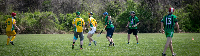 Hurling, AOH St. Charles, Tigin, 2017 (115 of 325).jpg