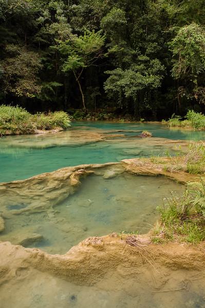 Landscape In Semuc Champey, Lanquin, Guatemala, Central America