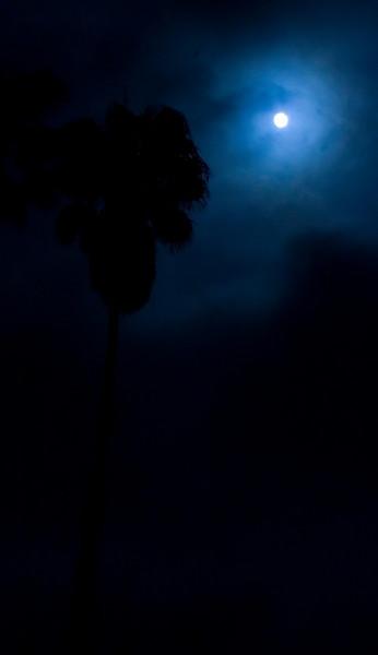 Moon Night_07-6.jpg