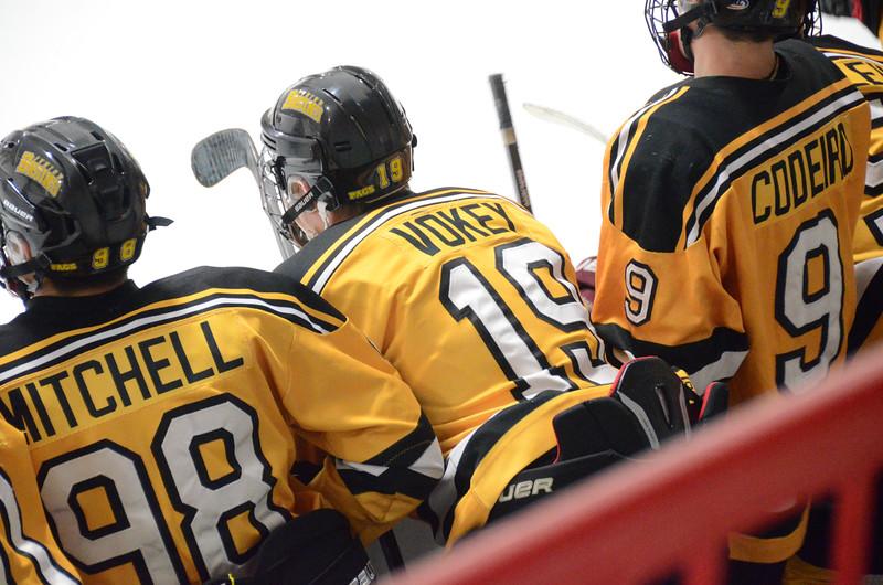 140913 Jr. Bruins vs. 495 Stars-090.JPG