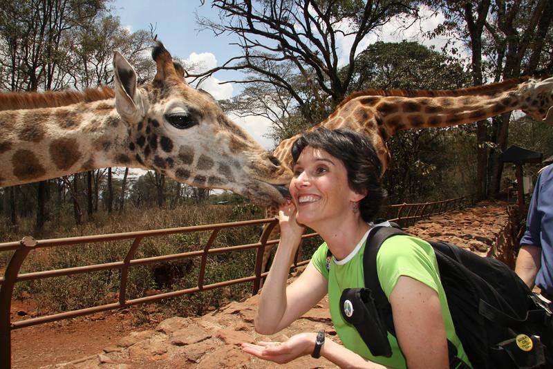 Getting a kiss at the Giraffe Center!