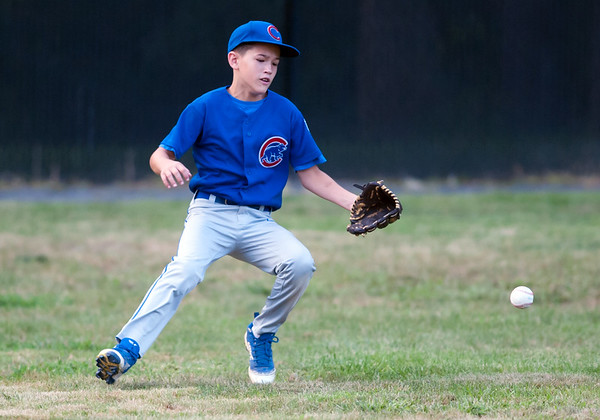 08/20/18 Wesley Bunnell | Staff The Bristol Little League City Series on Monday night featuring the Cub defeating the White Sox at Frazier Field. Kamden Laprise (1).