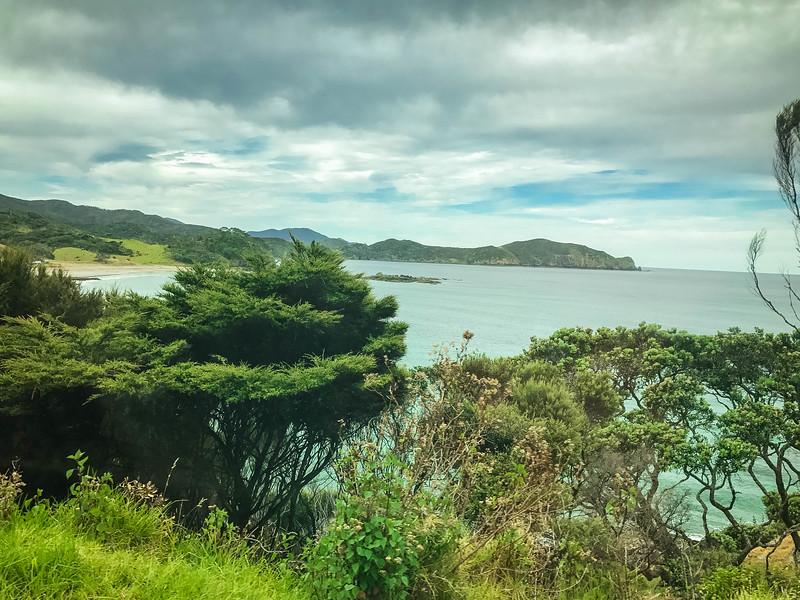 Bay-Of-Islands-61.jpg
