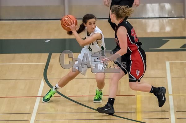 2015 High School Basketball