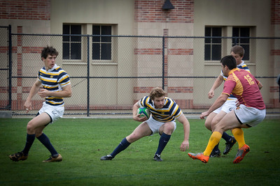 Cal Rugby-UCLA Tournament 2012