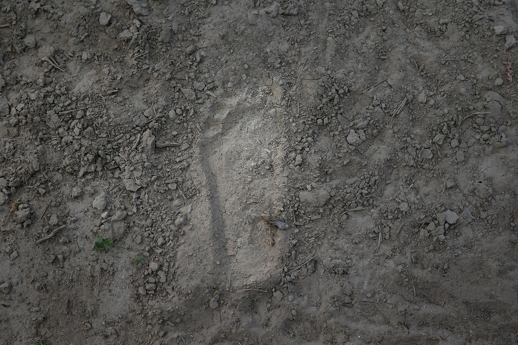 . A footprint, probably of an immigrant smuggler, according to a Border Patrol agent, lies near bank of the Rio Grande River at the U.S.-Mexico border on September 8, 2014 near McAllen, Texas. (Photo by John Moore/Getty Images)