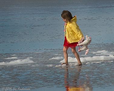 Ocean Beach 1/7/16