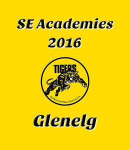 SE Academies - 2016