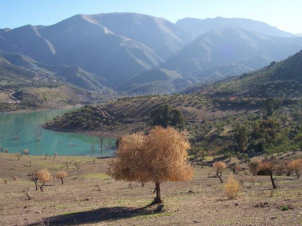 2005.01 Sierra de Grazalema
