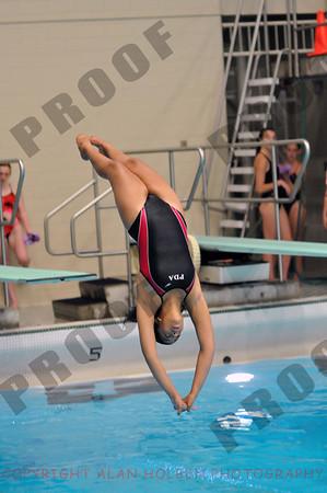 Michigan Diving Assn. State Championship - 14-19 girls 1 meter - Sunday, June 29