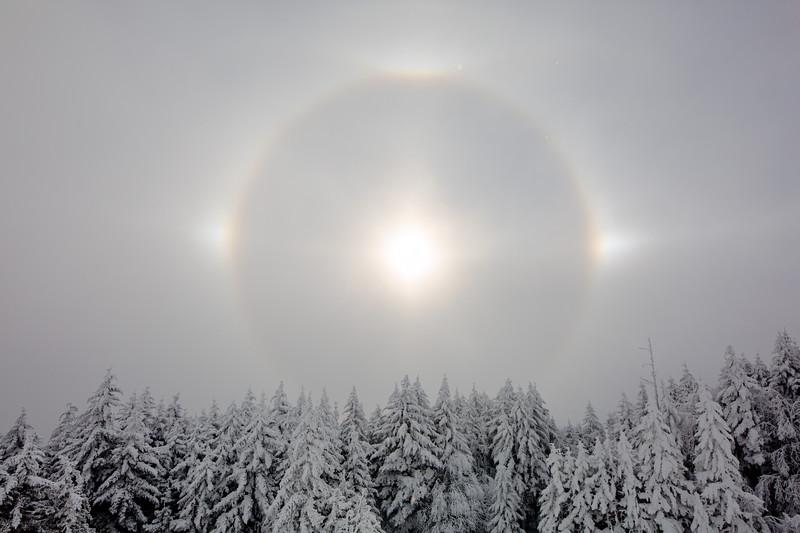 2020-01-29_SN_KS_Sundog-0184.jpg