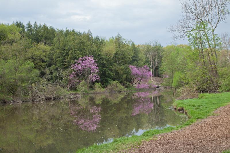 Spring13-0477.jpg