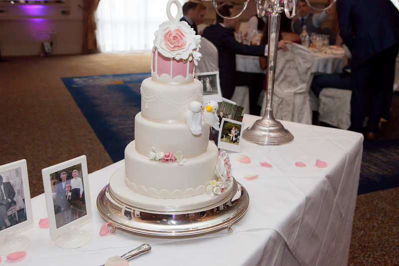 wedding (511 of 788).JPG