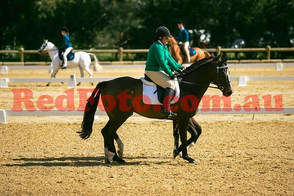 Wanda Nelson Pony Pairs and Stuart Harkness Horse Pairs