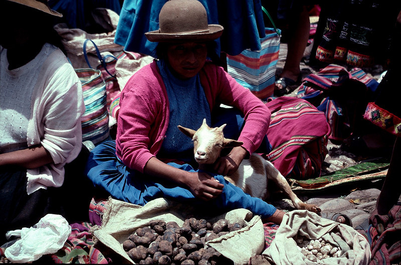 Peru1_104.jpg