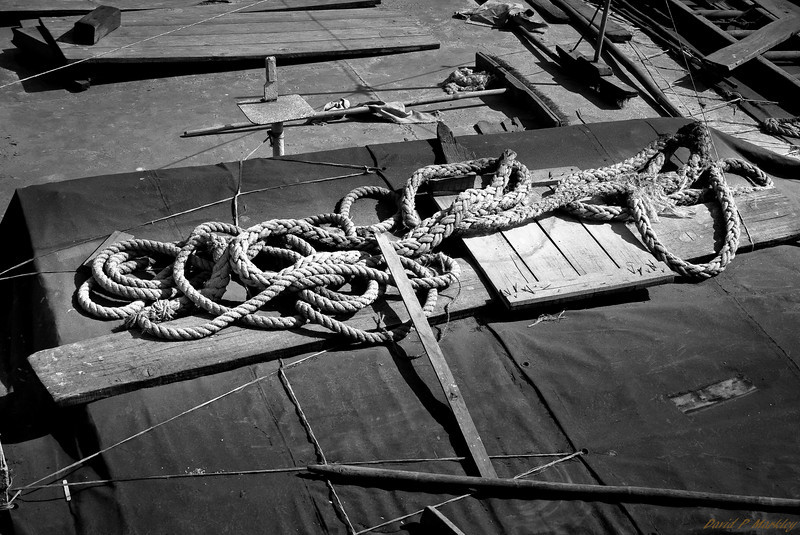 Entangled Rope