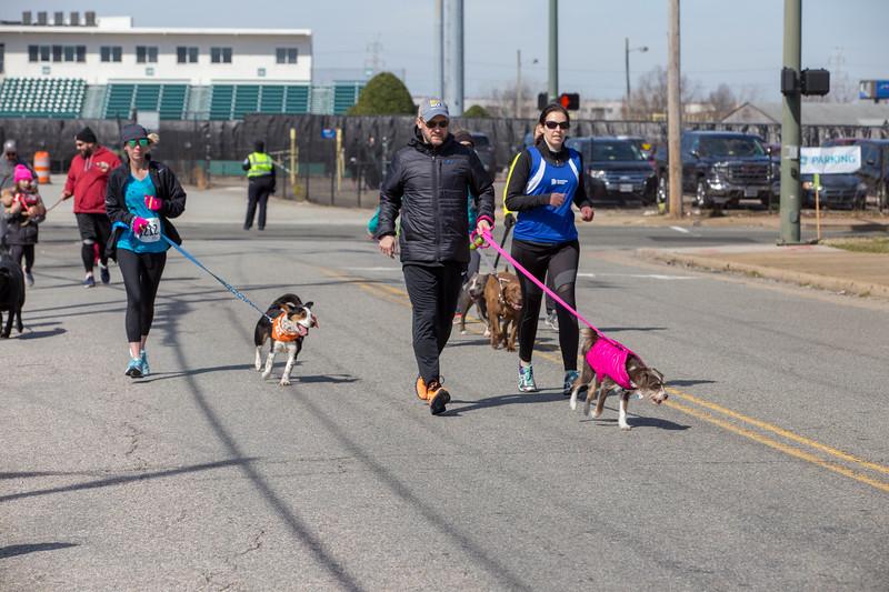 Richmond Spca Dog Jog 2018-704.jpg