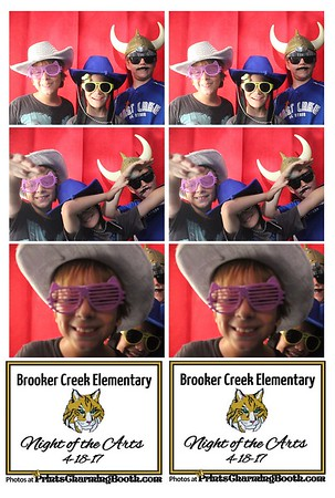 4-18-17 Brooker Creek Elem. Night of the Arts