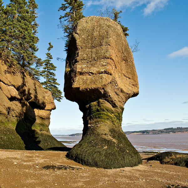 Hopewell rocks .