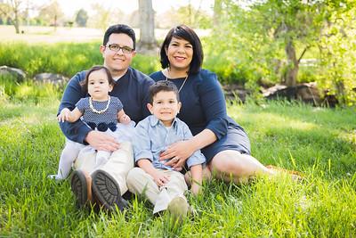 Mestas Family