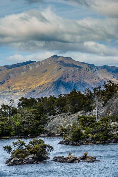 NZ-WANAKA-MOU WAHO ISLAND & BUFF WEKA-57.jpg