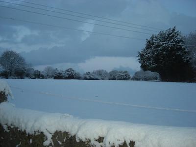Snow! 03/02/09
