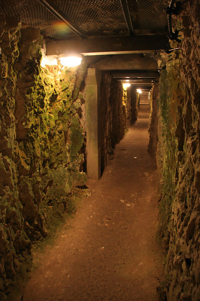 Inside the Canadian tunnels leading up to Vimy Ridge.  This was a really fascinating tour.