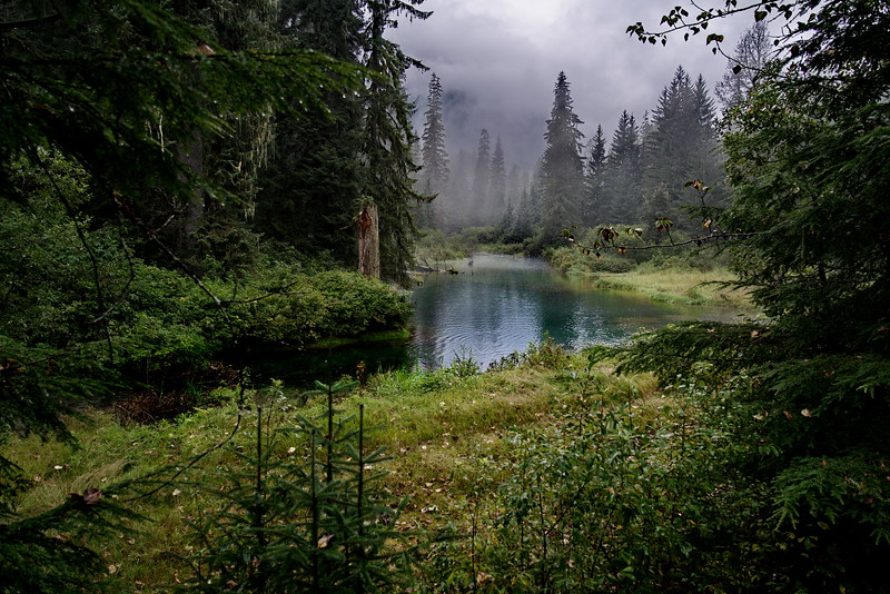Alaska, Fish Creek Wildlife Observation Site, Hyder