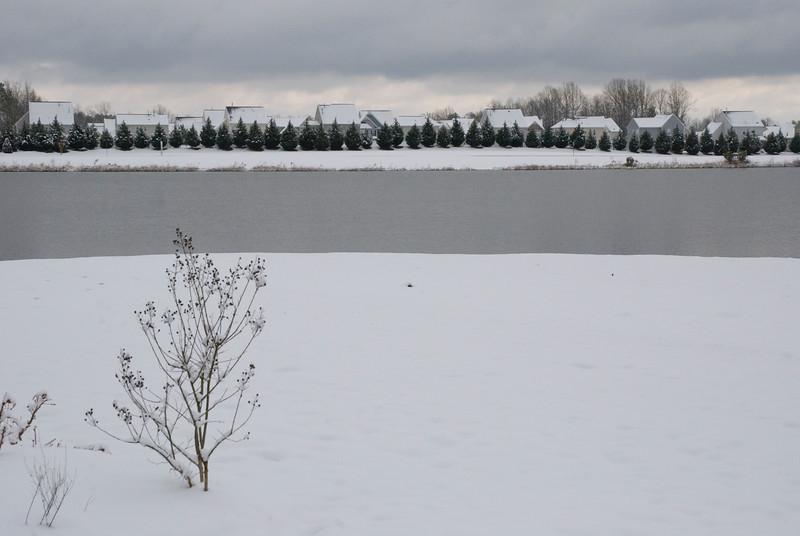 SnowFeb13-9.jpg