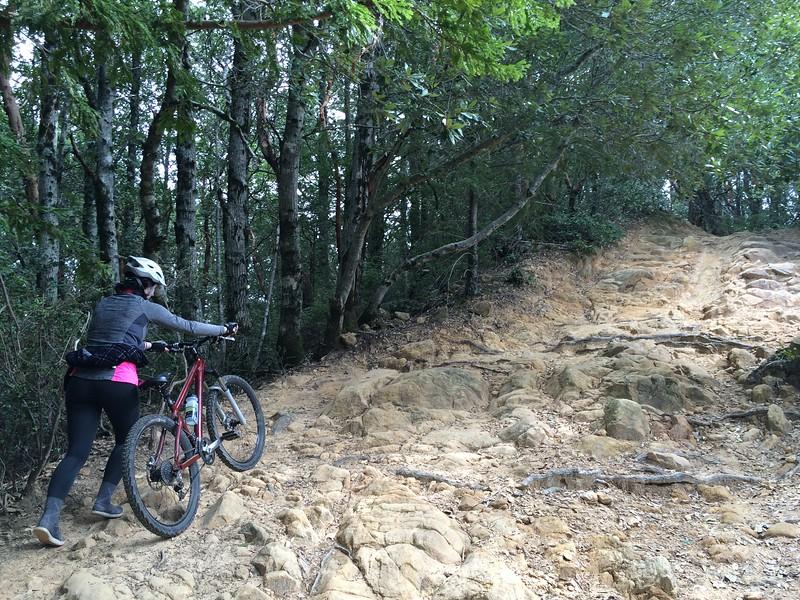 Walk-a-bike section of Manzanita