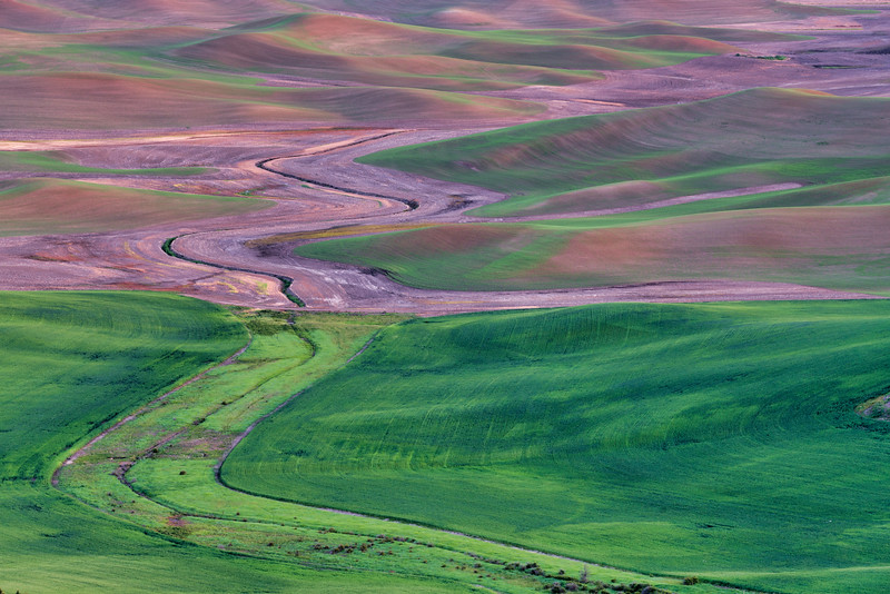 Patterns of the Palouse