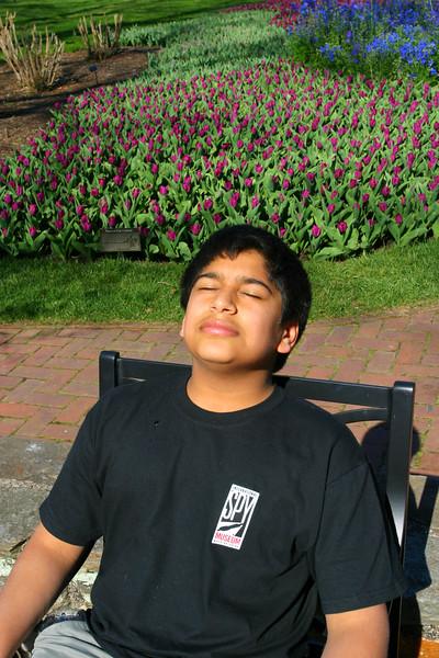 Longwood Gardens.  Zeryab catching rays.