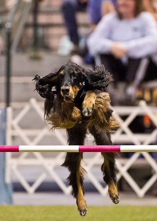 GSCA 2010 Agility Inv Article