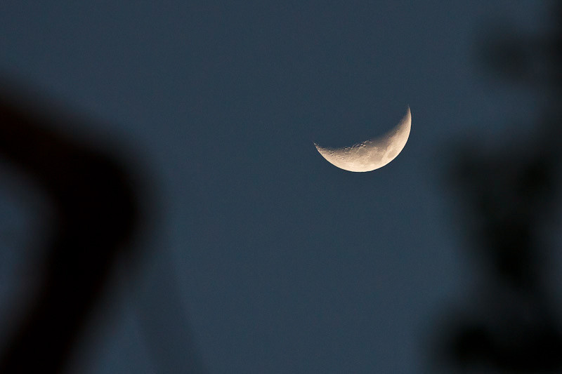February 8 - Moon at dusk.