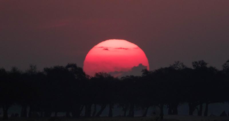 Sunset, Mana Pools National Park