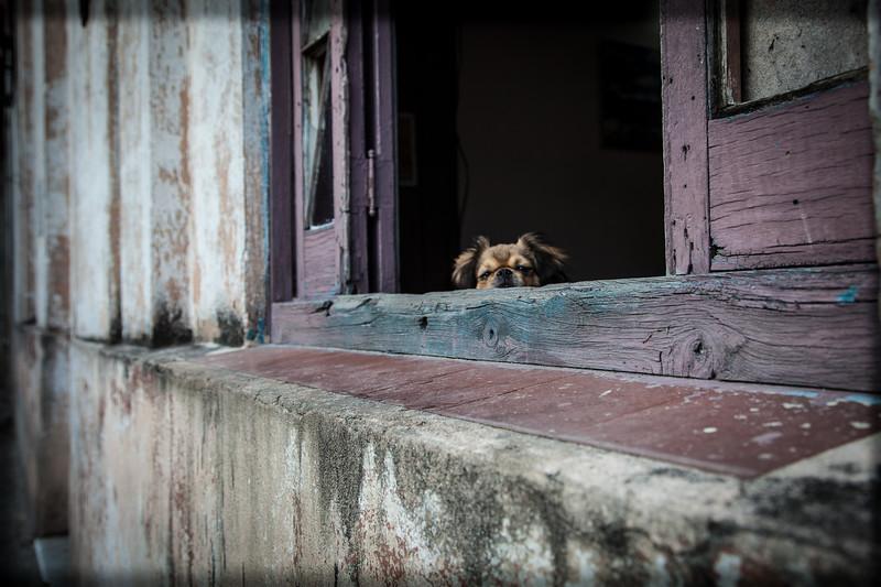 Cuba-Havana-IMG_9924.jpg