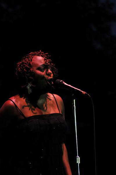 Newport Jazz Festival 2008