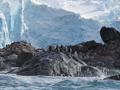 Journey to Antarctica: The White Continent