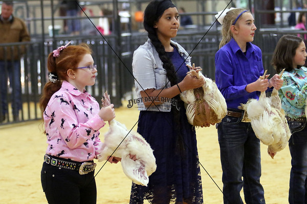 2018 Llano County Junior Livestock Show