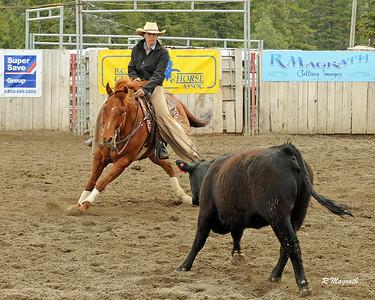 ZIRNHELTS 2017 $25K NOV HORSE NON PRO