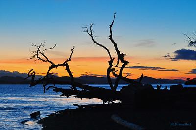 West Coast Sunrise/Sunset